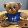 Register between now and March 31 to enter a FIT registration raffle!